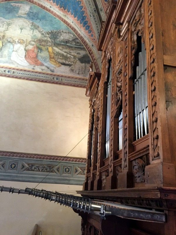 That odd organ with some of the pipes horizontal rather than vertical