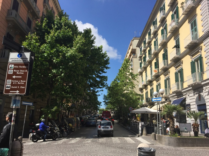 All is relatively serene up on the hill